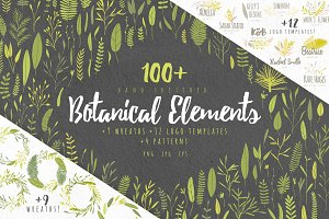 Vector Botanical Elements +Extras!