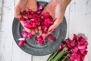 Woman hands making bouquets