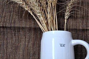 white beer mug and barley