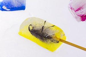 Beetle ice cream