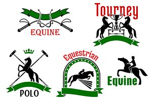 Equestrian sport, polo game