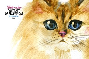 Watercolor portrait of a fluffy cat.
