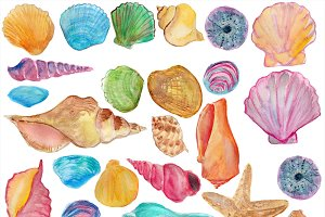 Shells watercolor clip art