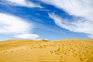 Dune days