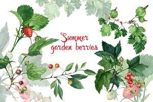 Watercolor garden berries