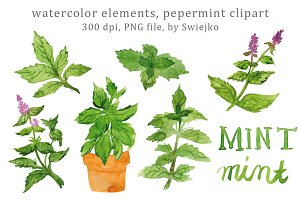 Watercolor Herbs, Peppermint