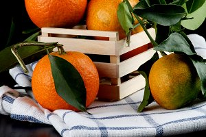 Ripe Tangerines with Leafs