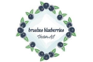 Brushes blueberries + 2 illustration