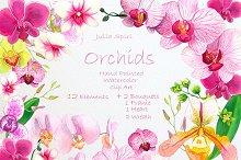 Orchids Watercolor Clip Art
