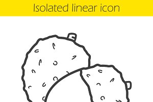 Lichee linear icon. Vector