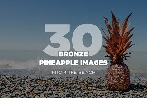 30 Rose Gold Pineapple Images