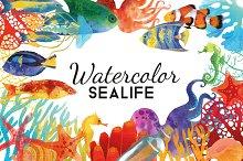 Watercolor sealife