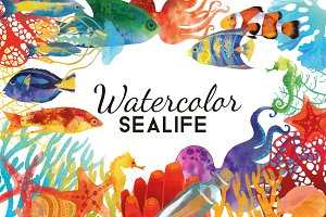 Watercolor sealife