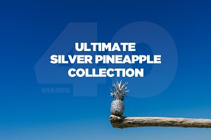 Ultimate Silver Pineapple Collection