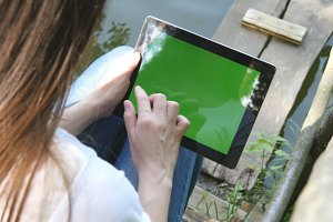 Female hands using digital tablet pc with green screen sitting on a wooden jetty by the lake.