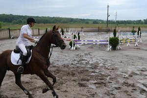 Professional female jockey rides on horseback. Horse runs on the sand and jumps through a barrier.