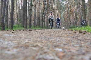 Two young men riding a bike on pathway in forest. Mountain bikers passing by the camera in a green woods. Active men spending her weekend outdoors.