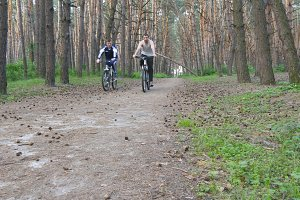 Two guys riding a bike on pathway in forest and talking. Mountain bikers passing by the camera in a green woods. Active men spending her weekend outdoors.