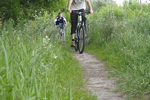 Two boy riding a bike on a forest path. Active friends spending their weekend outdoors riding a bike