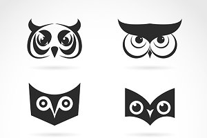 Vector image of an owl face design