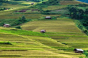 Northwest Vietnam