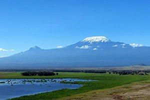 Landscape with Kilimanjaro