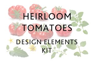 Heirloom Tomatoes DIY KIT