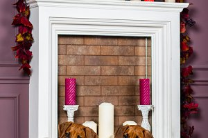 Two Rhodesian Ridgeback puppies in front of stylized  fireplace