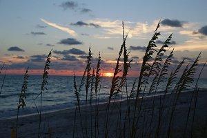 Longboat Sunset