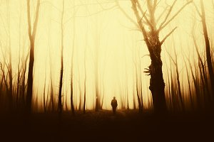 Man standing in surreal forest