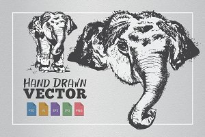 Elephant Hand Drawn Illustration