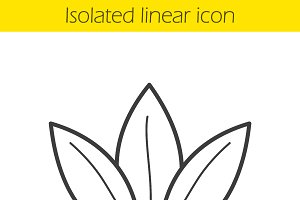 Tea leaves linear icon. Vector