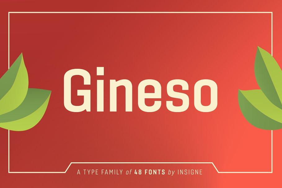 Gineso ~ Sans Serif Fonts ~ Creative Market