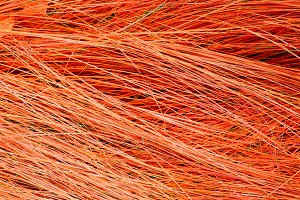 red hay grass nature background