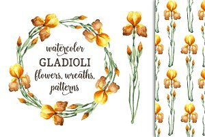 Watercolor gladioli set