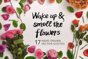 17 Hand Drawn Vector Quotes