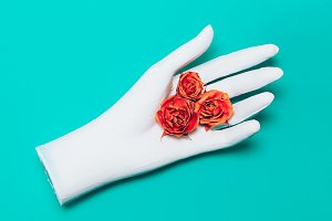 Roses and Hand Minimalism Art.