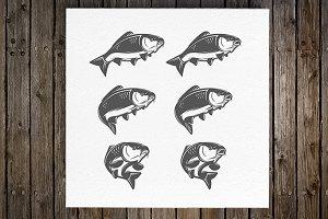 Vintage various carp fish