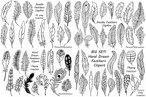 BIG SET of Doodle Feathers ClipArt