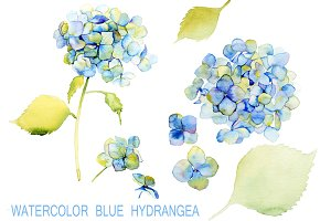 Watercolor Blue Hydrangea. Set.