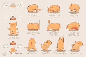 Yoga-Cat