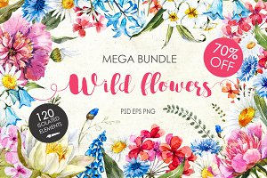"Watercolor bundle ""WIld flowers"""