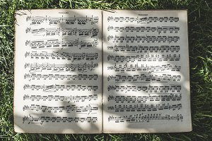 Music book on green meadow.