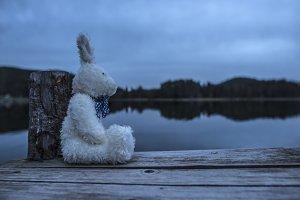 Fluffy toy bunny sitting on a pier.