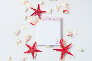 Notes roses sea stars I Styled Stock
