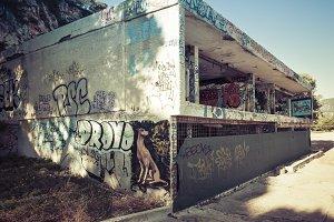 the graffiti bunker