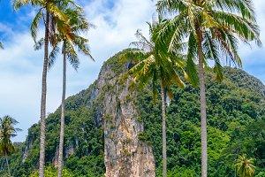 Phi-Phi island, Krabi, Thailand