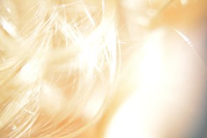Golden Curls of Hair