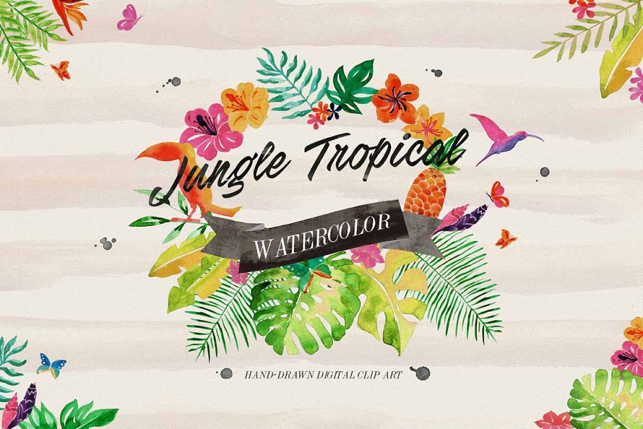 Jungle Tropical in Illustrations - product preview 8