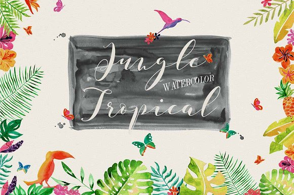 Jungle Tropical in Illustrations - product preview 1